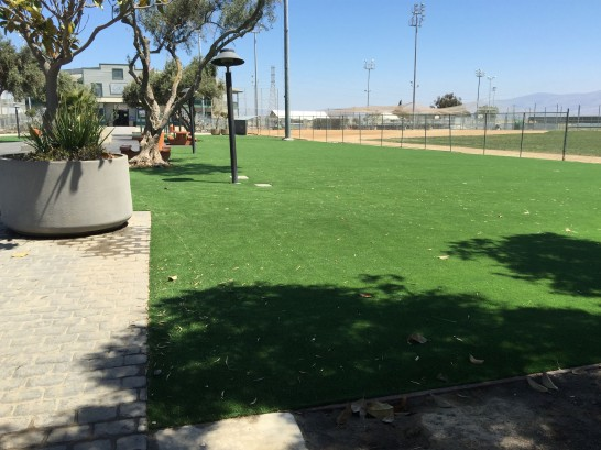 Artificial Grass Photos: Synthetic Lawn Williams, California Paver Patio, Recreational Areas