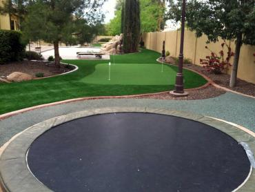 Artificial Grass Photos: Synthetic Turf Parkway, California Home Putting Green, Backyard Garden Ideas