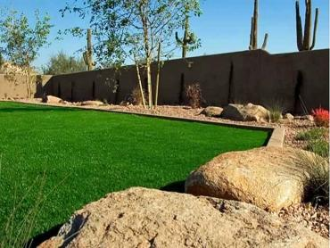 Artificial Grass Photos: Synthetic Turf Supplier Coarsegold, California Landscape Design, Backyard Design