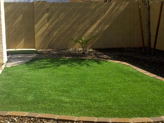 Artificial Grass Photos: Synthetic Turf Supplier Cupertino, California Home And Garden, Backyard