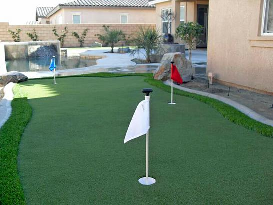 Artificial Grass Photos: Synthetic Turf Supplier Guerneville, California Lawn And Landscape, Backyard Designs