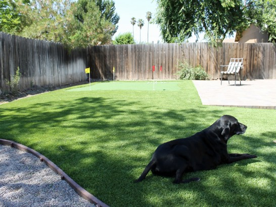 Synthetic Turf Supplier Oakdale, California Dog Run, Backyard Garden Ideas artificial grass