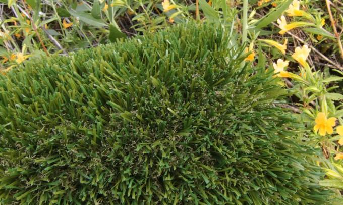Double S-72 syntheticgrass Artificial Grass Oakland, California