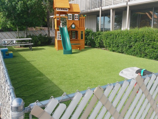 Artificial Grass Photos: Turf Grass Arden-Arcade, California Landscape Rock, Backyard Landscaping