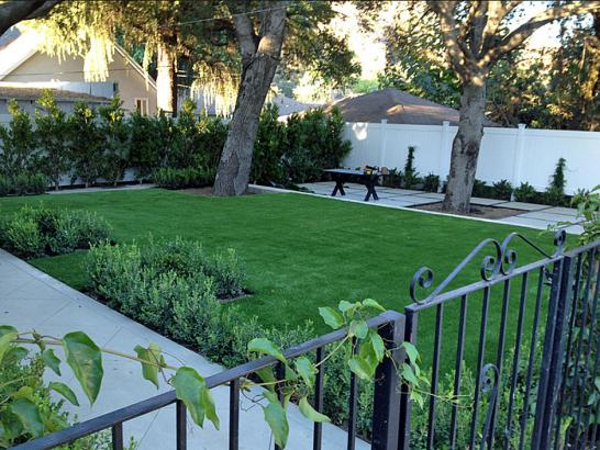 Artificial Grass Photos: Turf Grass Boulder Creek, California Garden Ideas, Front Yard Landscape Ideas