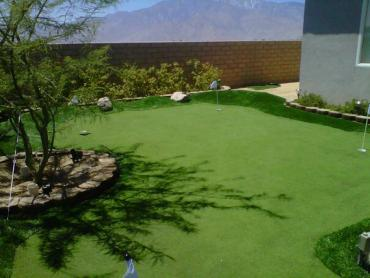 Artificial Grass Photos: Turf Grass Folsom, California Home Putting Green, Backyard Design