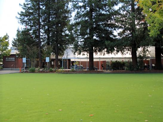 Artificial Grass Photos: Turf Grass Sunnyvale, California Lawn And Landscape, Parks