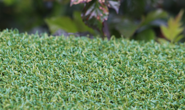 Artificial Grass Putt-46 BiColor Artificial Grass Oakland, California